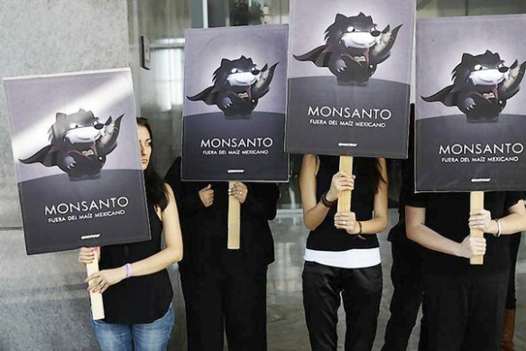 Greenpeace activists hold placards during a demonstration at Monsanto company offices in Mexico City