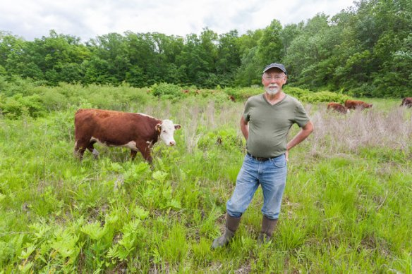 Charles Nobel, a retired school administrator turned rancher, produces grass-fed beef in Stone Ridge, N.Y., for direct sale to customers. Credit Phil Mansfield for The New York Times