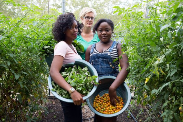 Maggie Cheney, center, the director of farms and education for the food-access group EcoStation:NY, at the Bushwick Campus Farm in Brooklyn with Kristina Erskine, left, and Iyeshima Harris, garden managers. Credit Erin Patrice O'Brien for The New York Times
